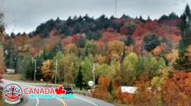 CANADA_005.jpg