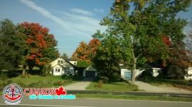 CANADA_009.jpg