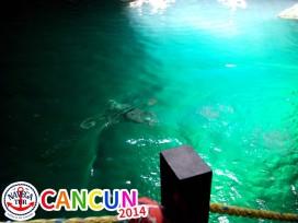 CANCUN_028.jpg