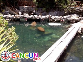 CANCUN_056.jpg