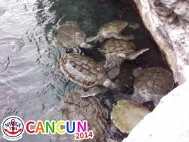 CANCUN_064.jpg